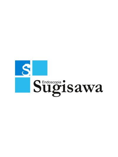 Sugisawa